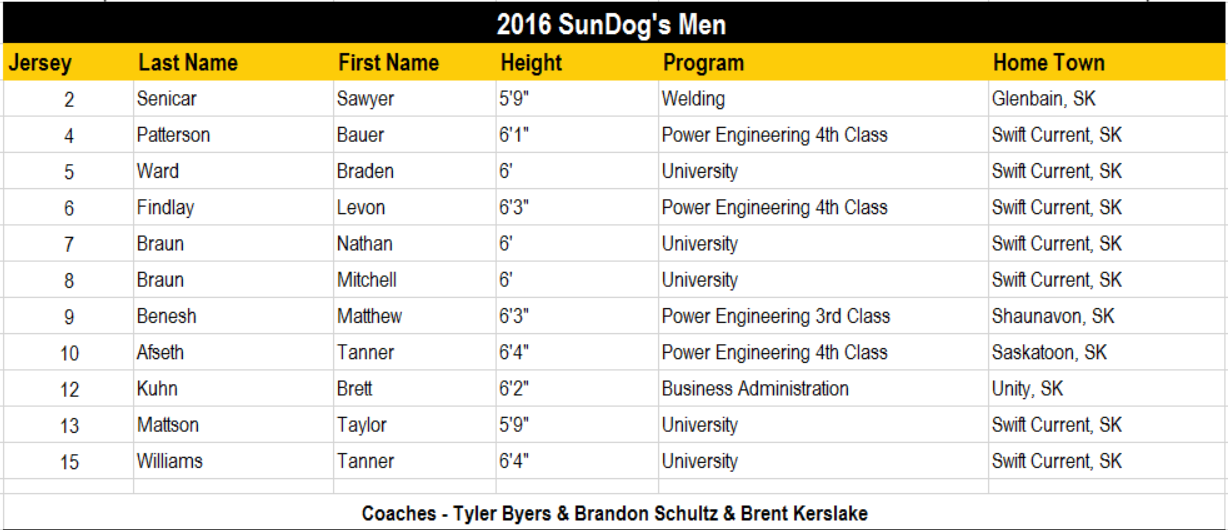 Men's volleyball roster